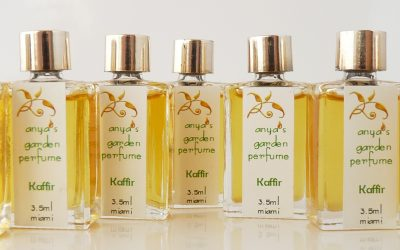 An Extravagant Perfumed Life – Newsletter