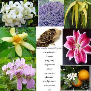 fragrant botanicals for hydrosols