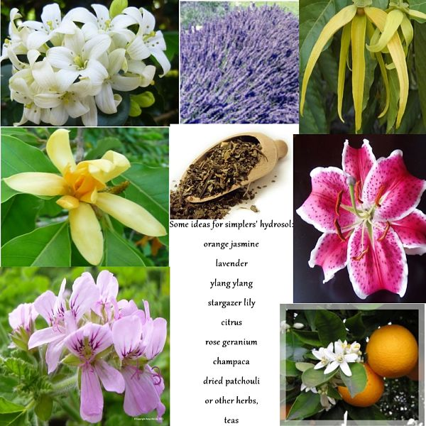 Some ideas for a simplers' hydrosol - lilies, rose geranium, citrus rinds, leaves, or flowers, dried patchouli or other herbs or teas - etc., etc.